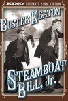 Subtitrare Steamboat Bill, Jr. (1928)
