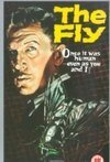 Subtitrare The Fly (1958)