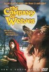 Subtitrare The Company of Wolves (1984)