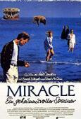 Subtitrare The Miracle (1991)