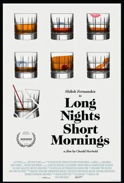 Subtitrare Long Nights Short Mornings (2016)