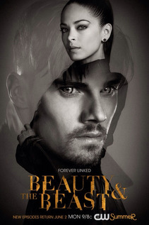 Subtitrare Beauty and the Beast - Sezonul 4 (2016)