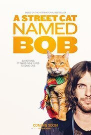 Subtitrare A Street Cat Named Bob (2016)