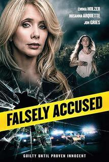 Subtitrare Falsely Accused (2016)