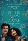 Subtitrare The Sun Is Also a Star (2019)